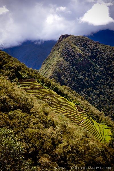 Inca Trail Terrace Peru