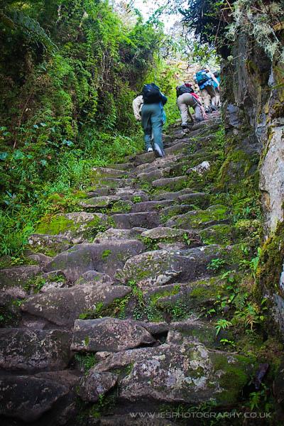 Machu Picchu Inca Trail Peru