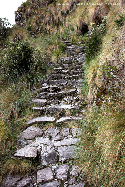 Inca Trail Path Peru